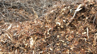 Le bois qui sera utilisé comme combustible après avoir été distillé