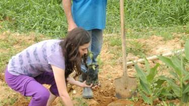 Chaque participant plante un arbre à la fin du stage