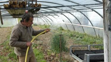Serge arrosant ses plantes aromatiques